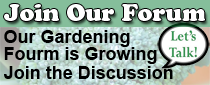 Zone 9 Vegetable Gardening Forum