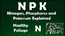 N-P-K Nitrogen Phosphorus and Potassium