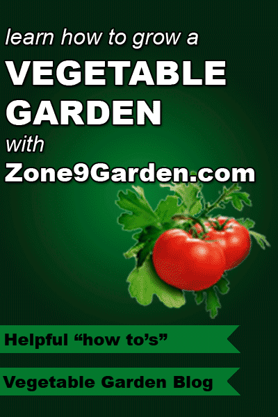 Learn how to grow a vegetable garden with Zone9Garden.com. Including a blog, forum and much more.