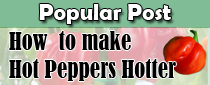 Make Hot Peppers Hotter