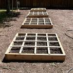 4x4 raised beds