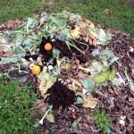 compost1 IMG_2725