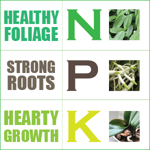 Nitrogen Only Fertilizer NPK – Nitrogen Phosp...